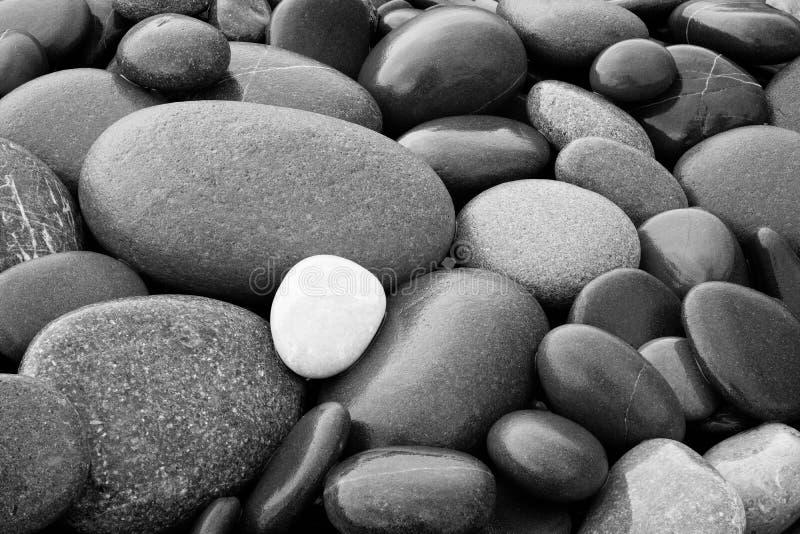 Czarny I Biały abstrakta round gładkich mokrych otoczaków tekstury denny tło obraz royalty free
