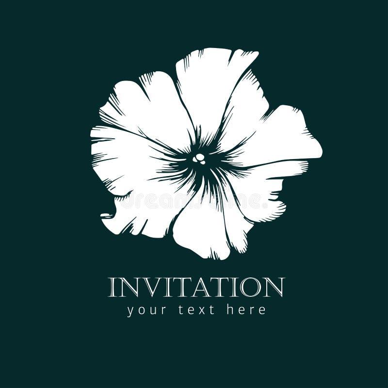 Czarny i biały atramentu kreskowego stylu nakreślenia kwiat Ręka malująca petunia royalty ilustracja