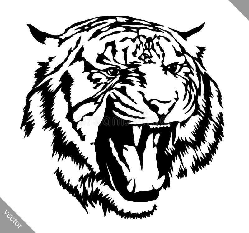 Czarny i biały atramentu remisu tygrysia wektorowa ilustracja royalty ilustracja