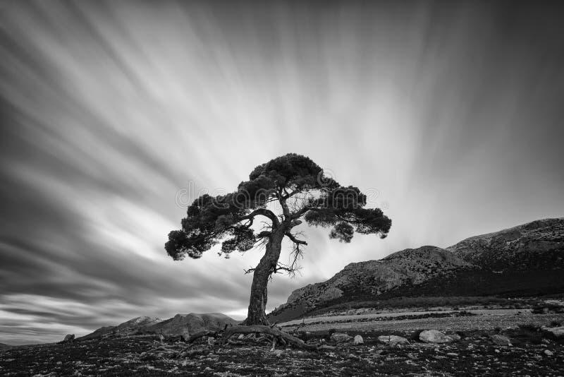 Czarny i biały długa ujawnienie fotografia, krajobraz z starym zdjęcie stock
