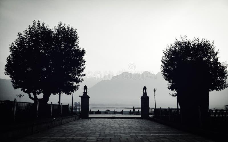Czarny i biały fotografia drzewa i nieprawdopodobne góry z pięknym ranku widokiem zdjęcia stock
