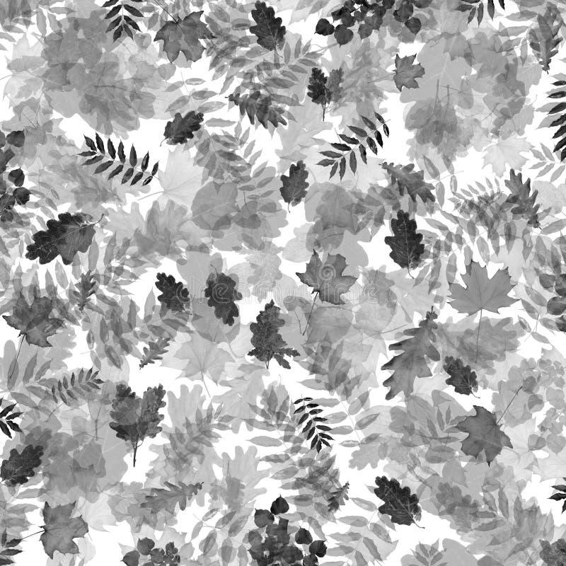Czarny i biały jesieni ulistnienie w chaotycznym rozkazie na abstrakcjonistycznym tle ilustracji