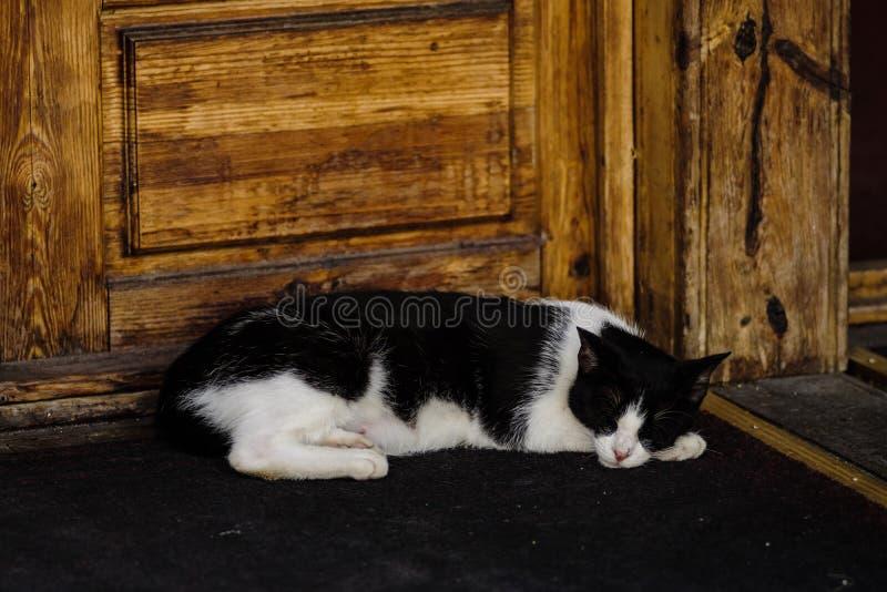Czarny i biały kot śpi obok drewnianego drzwi na ulicie obrazy stock