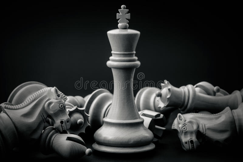 Czarny I Biały królewiątko i rycerz szachowy ustawianie na ciemnym backgroun obraz stock