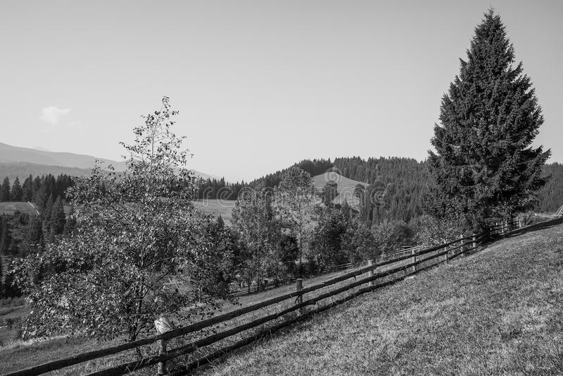 Czarny i biały krajobraz kolej w letnim dniu obraz royalty free