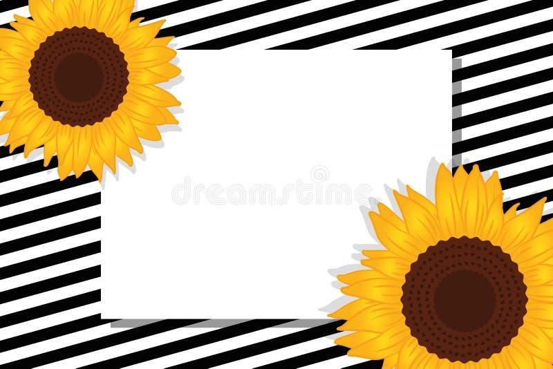Czarny i biały pasiasta karta z słonecznikami ilustracji