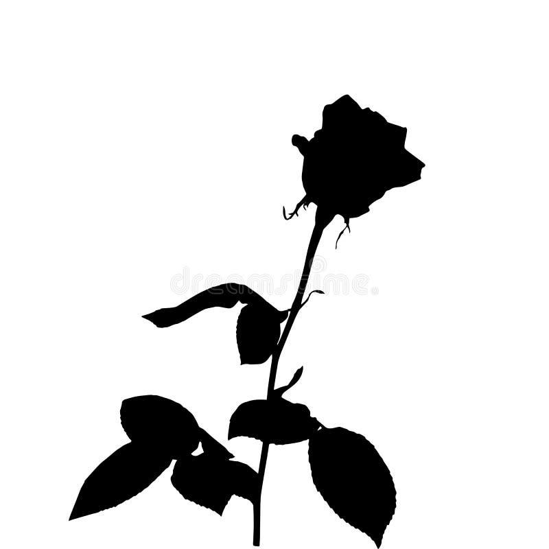 Czarny i biały sylwetka wzrastał pojedynczy białe tło również zwrócić corel ilustracji wektora ilustracji