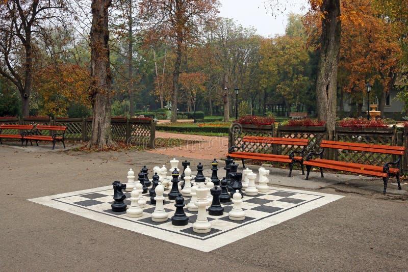 Czarny i biały szachy postacie w parku obrazy royalty free