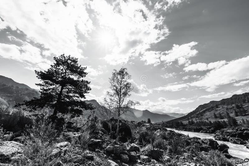 Czarny i biały szeroki kąta krajobraz w górach obraz royalty free