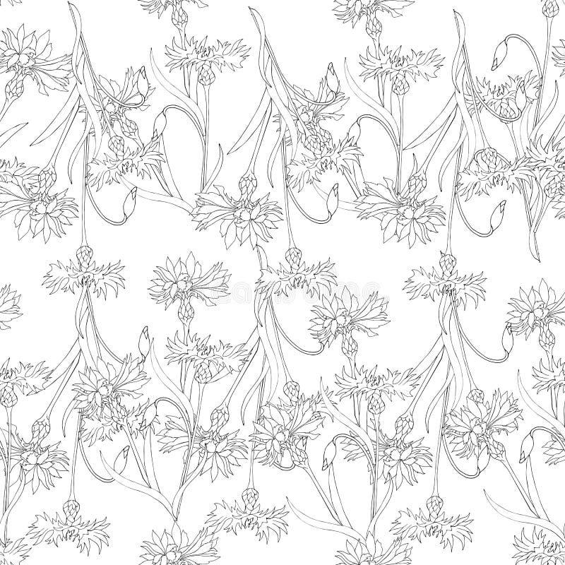 Czarny i biały tło konturowi kolory Kwiecisty ornament rysujący w atramencie dla płytki, dekorujący karty i opakunkowego papier ilustracja wektor