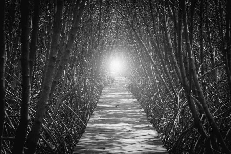 Czarny i biały wizerunek Drewniany most fotografia stock