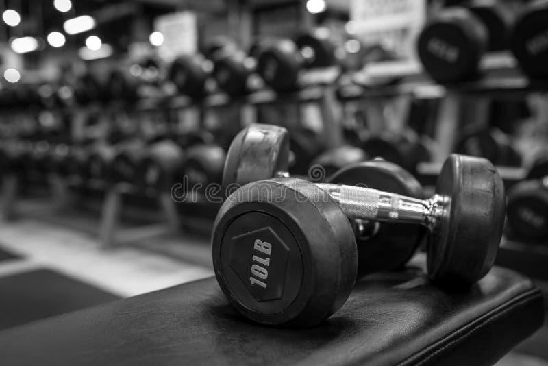 Czarny i biały wizerunku dumbbell w gym bodybuilding zdjęcie stock