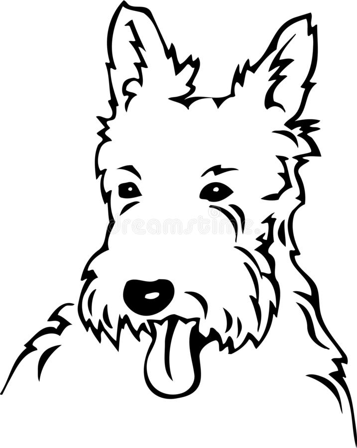 Czarny I Biały Zachodnia Górska Terrier ilustracja ilustracji