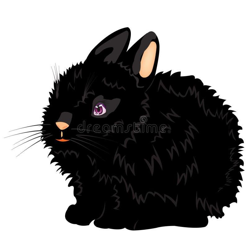 czarny ilustracyjny ładny królik ilustracji