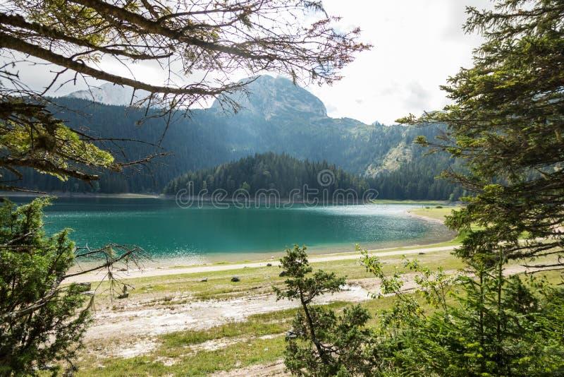 Czarny Jeziorny Crno jezero, parkowy Durmitor, Montenegro zdjęcie royalty free