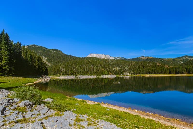 Czarny Jeziorny Crno Jezero w Durmitor, Montenegro - fotografia royalty free