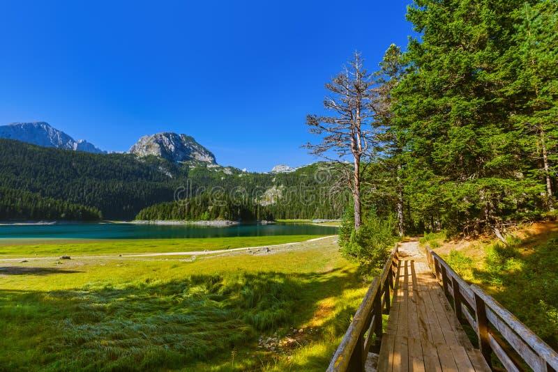 Czarny Jeziorny Crno Jezero w Durmitor, Montenegro - zdjęcie stock