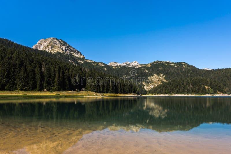 Czarny jeziorny ` Crno jezero ` z odbiciami Meded szczyt w krysztale - jasna woda, Durmitor park narodowy, Montenegro fotografia royalty free