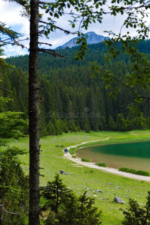 Czarny jezioro, Durmitor park narodowy, Zabljak, Montenegro zdjęcia royalty free