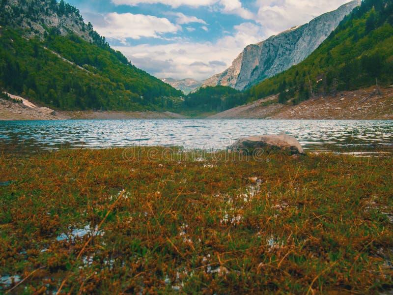Czarny jezioro krajobraz w Montenegro piękna natury zdjęcia royalty free