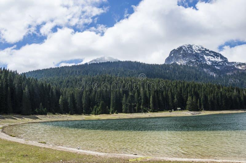 Czarny jezioro (Montenegro) obraz stock