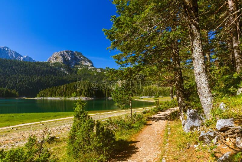 Czarny jezioro w Durmitor, Montenegro - (Crno Jezero) zdjęcie royalty free
