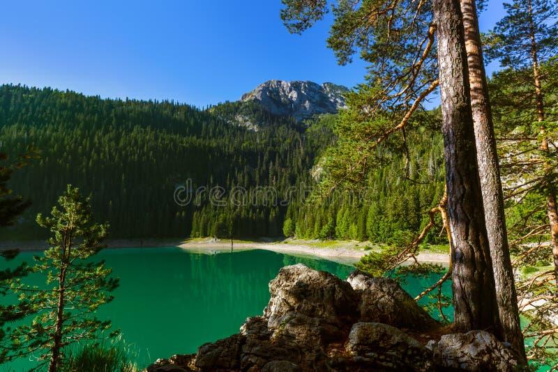 Czarny jezioro w Durmitor, Montenegro - (Crno Jezero) zdjęcie stock