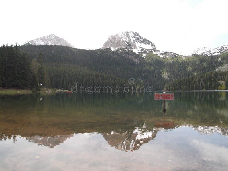 Czarny jezioro w wiośnie obraz stock