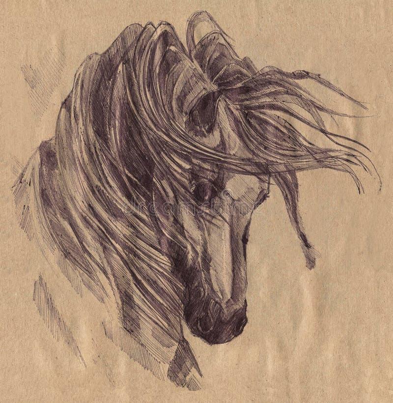 czarny koń grafit Malujący czarny pióro ilustracji