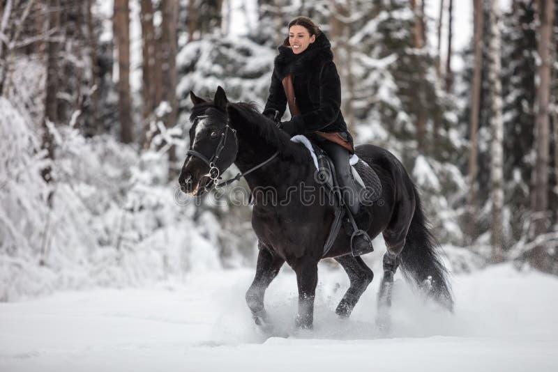 Czarny Koński bieg w śniegu na zimy tle obrazy stock