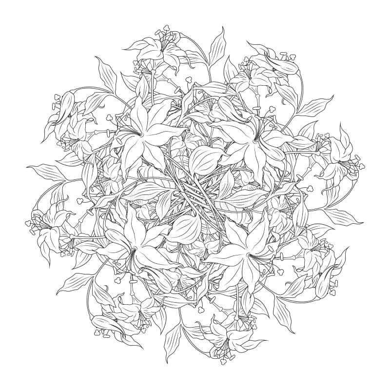 czarny kolor kwiatów bukiet wektor illustratio white royalty ilustracja
