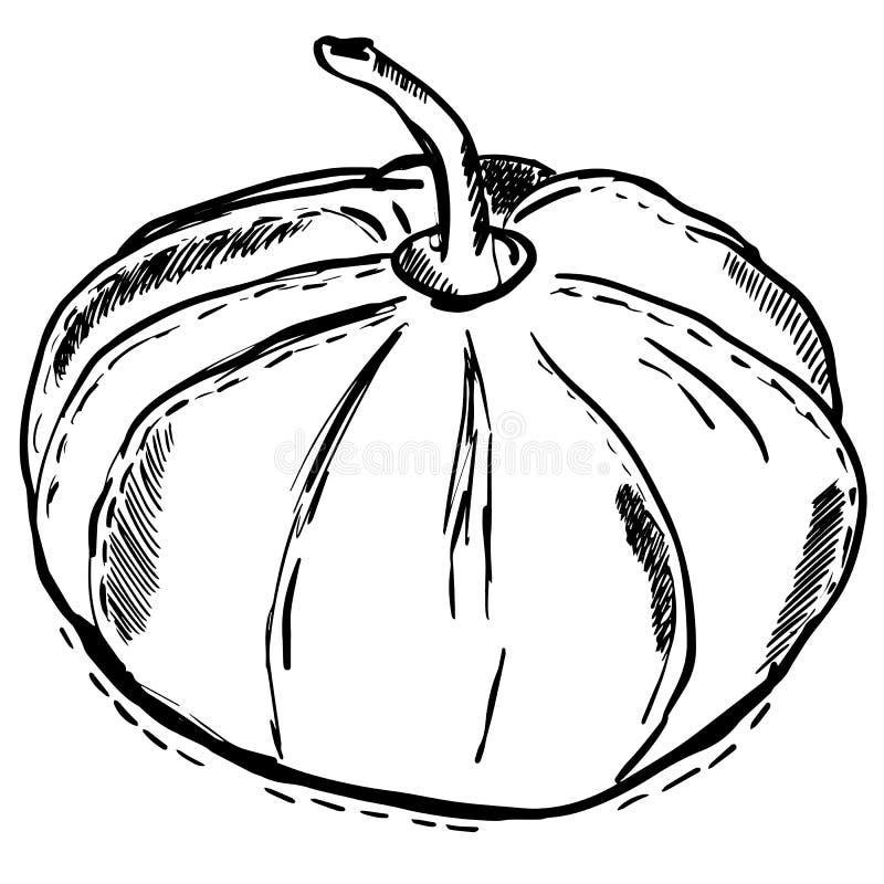 Czarny konturowy dyniowy tradycyjny Halloweenowy jedzenie royalty ilustracja