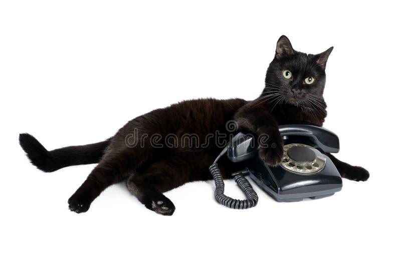 Czarny kot i retro czarny telefon na bielu zdjęcie royalty free