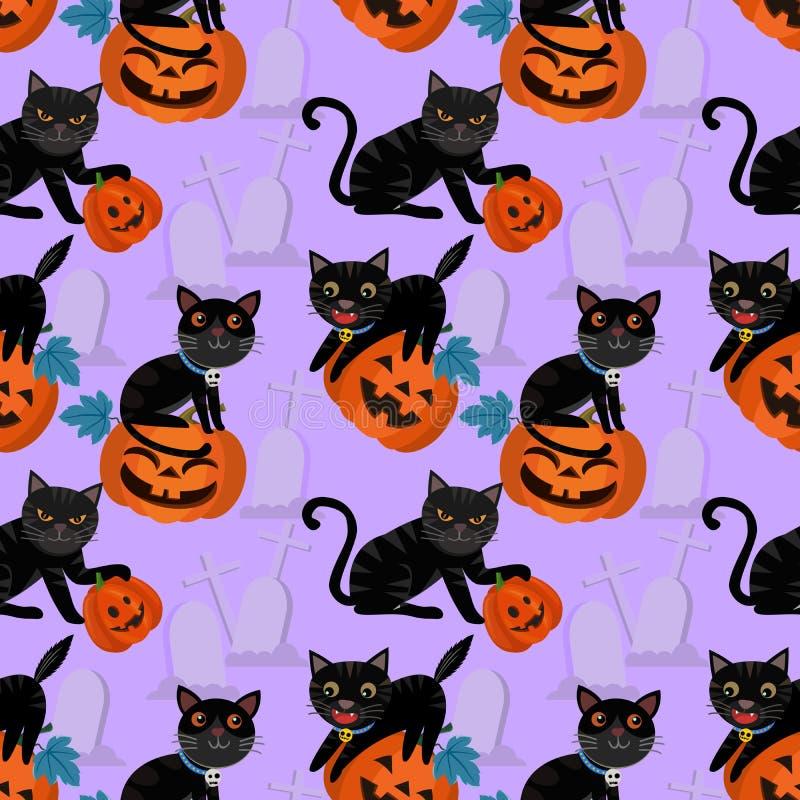 czarny kota Halloween bania royalty ilustracja