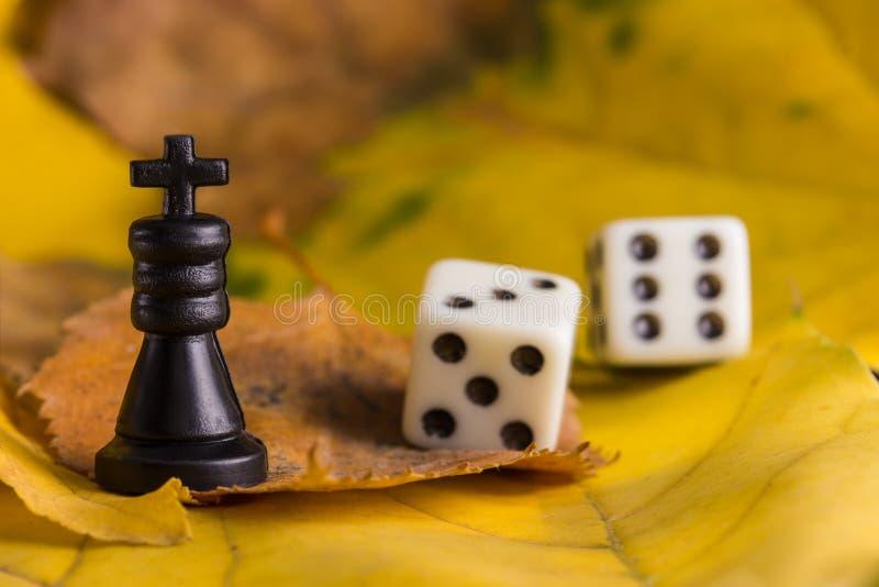 Czarny królewiątko i kostka do gry na spadać jesień liściach zdjęcia royalty free