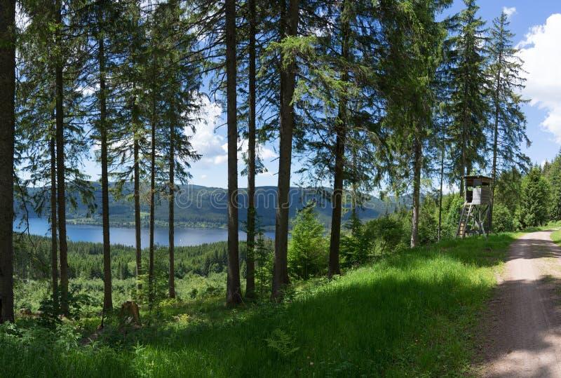 Czarny las przegapia jeziornego Schluchsee obraz stock