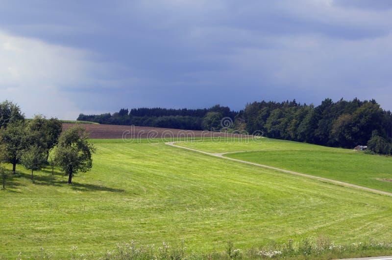 Czarny Lasowy region. Ðefore deszcz. obraz royalty free