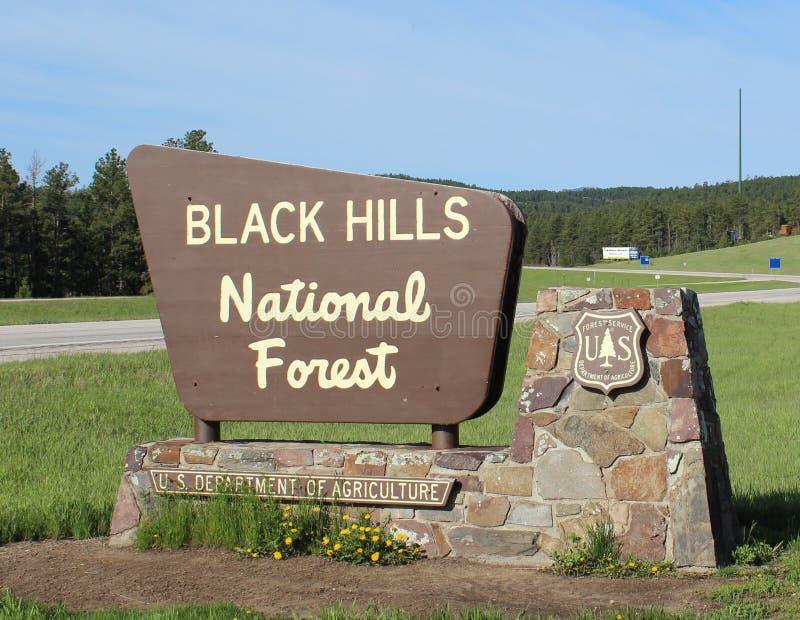 czarny lasu wzgórza krajowi zdjęcia stock
