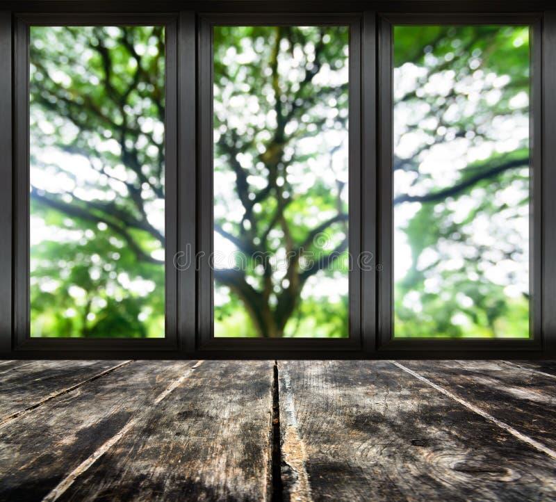 Czarny metalu okno z plama drzewnym widokiem zdjęcia royalty free