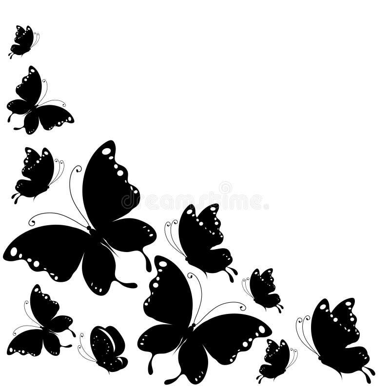 Czarny motyl, odizolowywający na bielu ilustracji