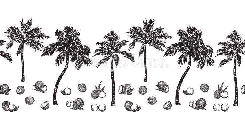 Czarny nakreślenia drzewko palmowe i kokosowego konturu horyzontalna bezszwowa granica Wektorowe rysunkowe coco rośliny R?ka rysu royalty ilustracja