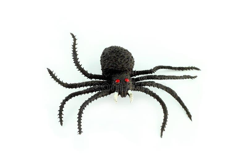 czarny pająk obrazy stock