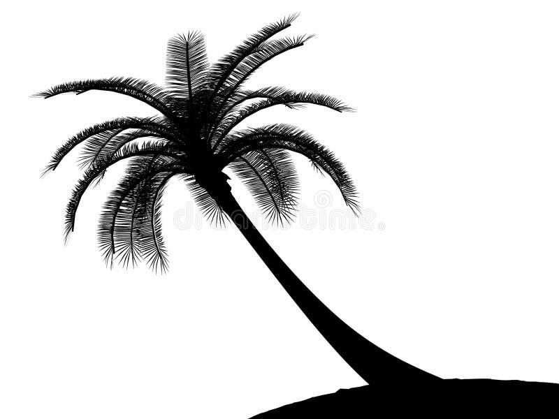 czarny palmowego palmtree drzewny biel ilustracja wektor