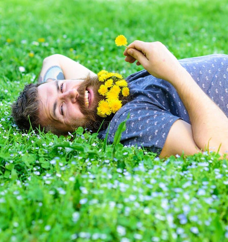 czarny pojęcia kwiatu zdrój dryluje ręcznika wellness Modniś z bukietem dandelions w brody relaksować Brodaty mężczyzna z dandeli obraz royalty free