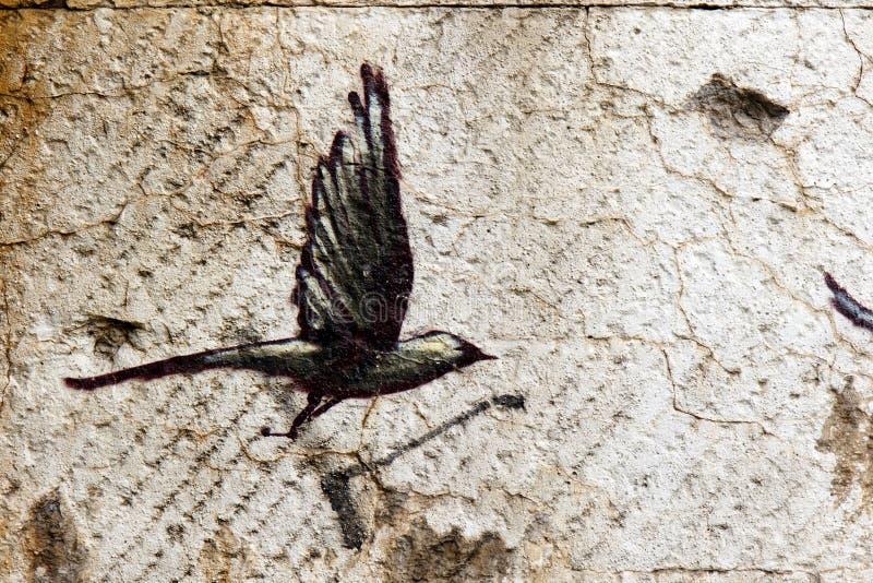 Czarny ptak w locie obrazy royalty free