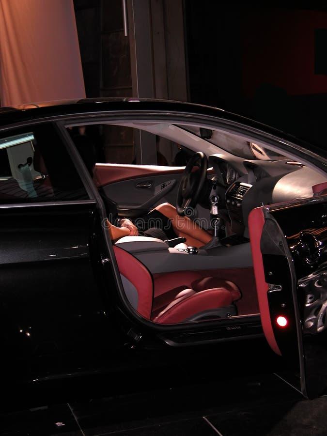 czarny samochód czworonożne miłego fotografia royalty free