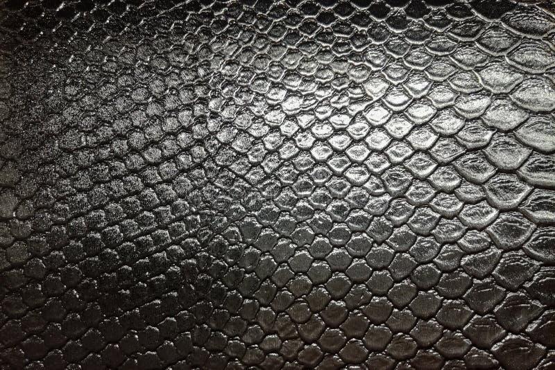 czarny snakeskin gada skóry wzoru tekstury tło zdjęcia royalty free