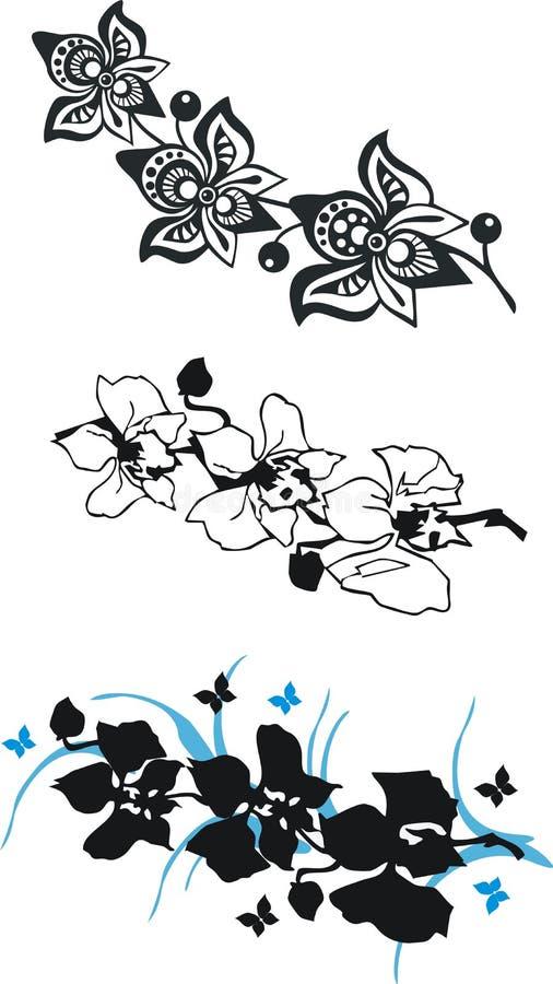 czarny storczykowy set ilustracji