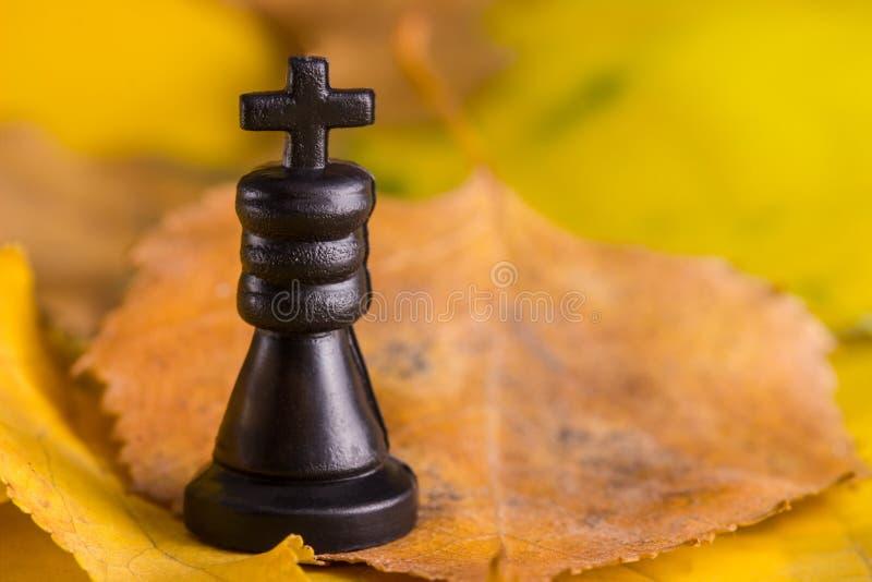Czarny szachowy królewiątko na ciepłym jesieni tle zdjęcia royalty free