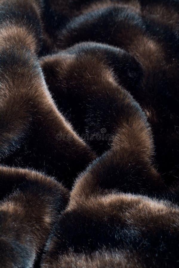 czarny tła futerko fotografia royalty free
